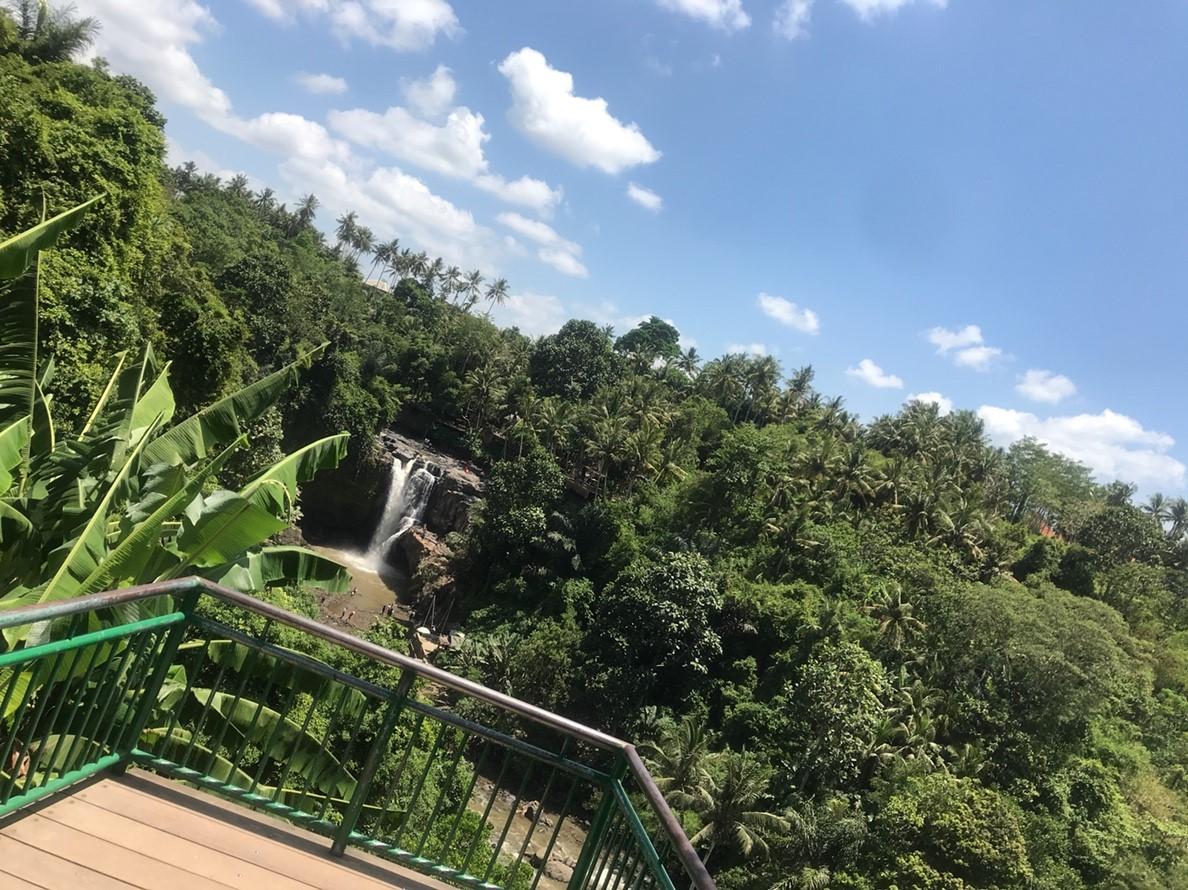 【バリ島旅行記 目次】格安ツアー&ウブドのリゾートに泊まる3泊5日(費用8万円~)