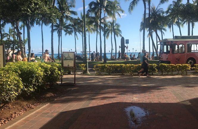 ハワイ トロリー jcb ピンクライン