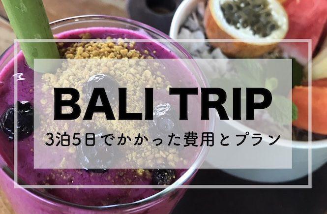 バリ 旅行 ブログ 2018 費用 プラン